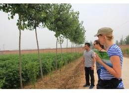 可持续农业-禾众基金会:促进可持续农业在全球发展