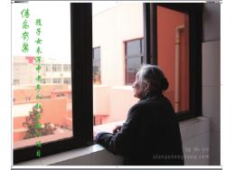 倦鸟有巢-随子女来深中老年人社区融入项目
